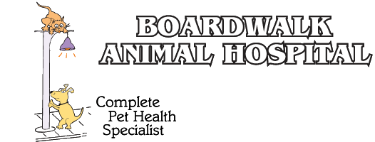 Boardwalk Animal Hospital