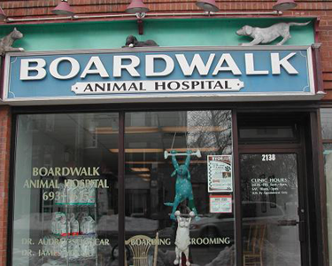 Boardwalk Animal Hospital Front